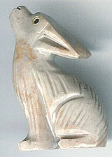 SSA-coyote.jpg
