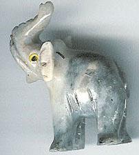 SSA-elephant.jpg