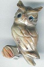 SSA-owl.jpg